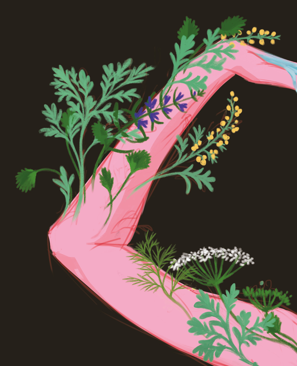 Illustration de Sandrine Pilloud | Absinthe | Exposition pbk9
